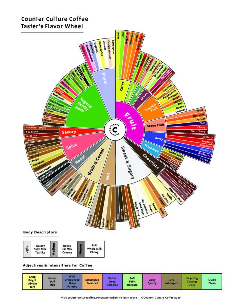 Counter Culture coffee flavor wheel